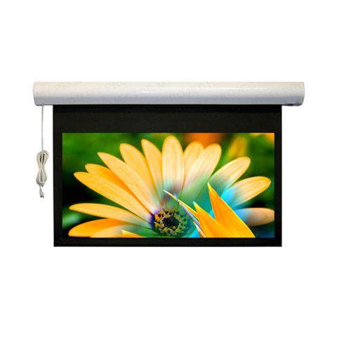 """DP Motorized/Electric Projection Screen 144"""" x 144"""" (Seamless)"""