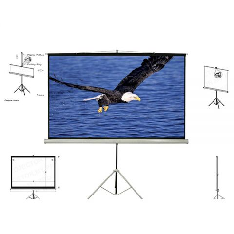 Unic Tripod Screen TMP-240 (8' x 8')