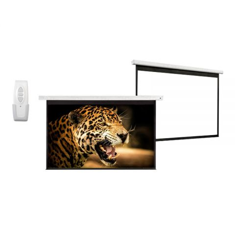 "Dopah Motorized Projection Screen 60"" x 60"""